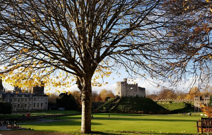 Visiting Cardiff Castle on the Remembrance DayCentenary